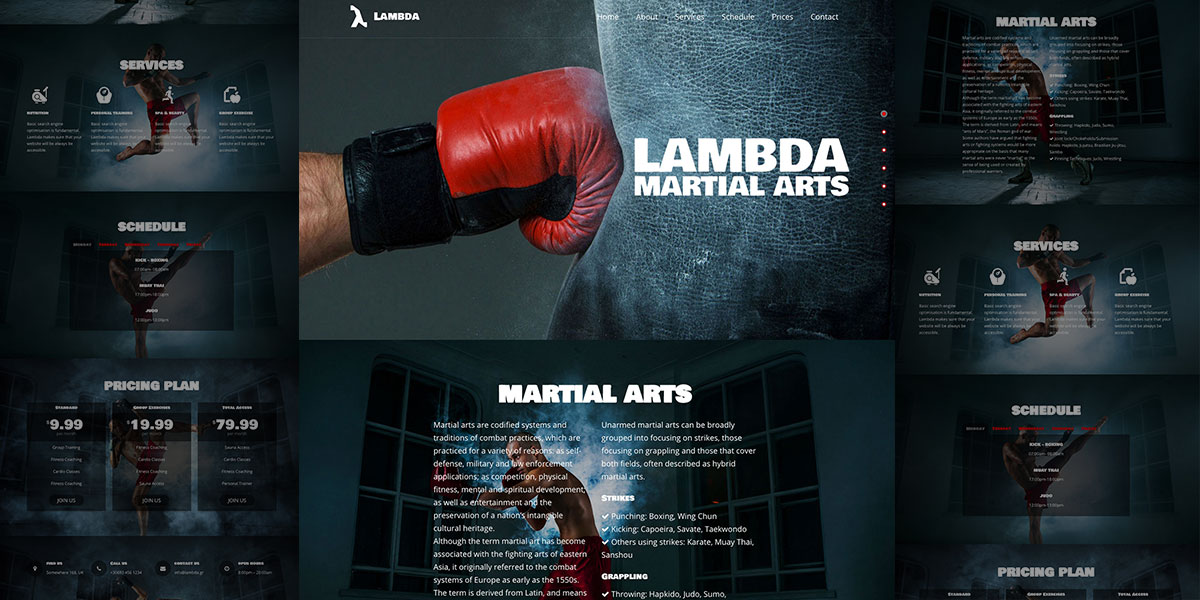 Lambda Martial Arts Demo – Strength comes from the core!